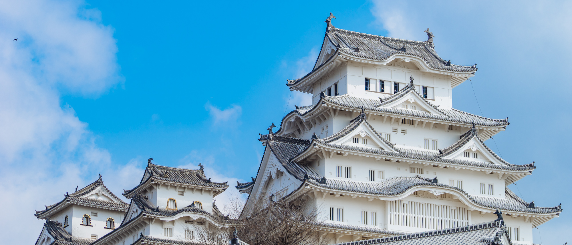 Featured image of post 2019 Japan Trip Day 2 Visit Himeji Castle
